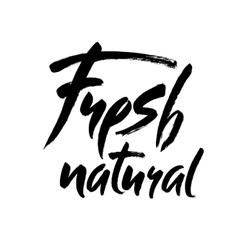 Modern brush lettering Handwritten words - fresh vector image