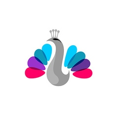 Peacock colorful logo vector image vector image