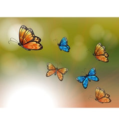 A special paper with orange and blue butterflies vector image