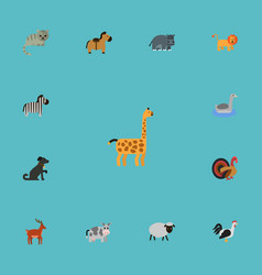 flat icons kitty hippopotamus horse and other vector image vector image
