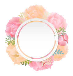 Flower banner peony vector