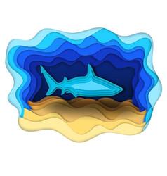 A formidable shark on the hunt vector