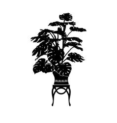 Monstera in a flower pot vector