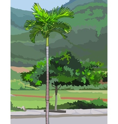 palm tree on a green background vector image vector image