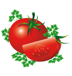 Red ripe tomatoes with herbs design of healthy vector