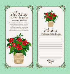 vintage label with hibiscus plant vector image