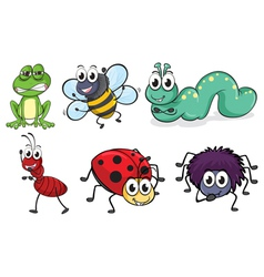 Various insects and animals vector