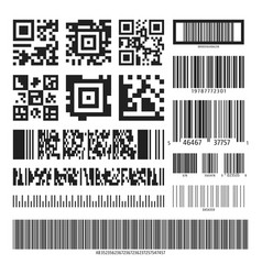 barcode and qr code set vector image