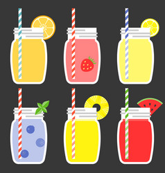 Fruit juice in jar vector