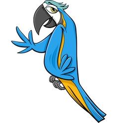 macaw parrot cartoon vector image vector image