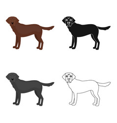 Mastiff single icon in cartoon stylemastiff vector