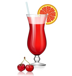 Cocktail with cherry and citrus vector image