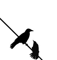 crows wire vector image vector image