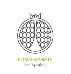 pomegranate line icon vector image