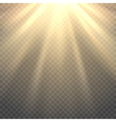 sunlight on transparent background vector image