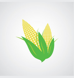 Corn on the cob vector