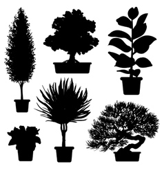 Silhouette of plants and flowers vector