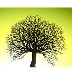 Big tree on green background vector
