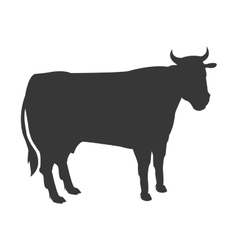 Cow silhouette icon vector