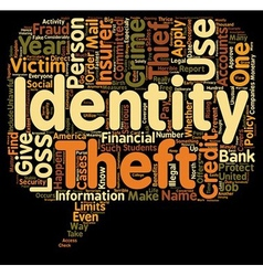 Identity theft insurance text background wordcloud vector