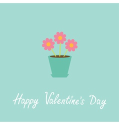 Three pink flowers in pot Happy Valentines Day vector image