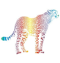 abstract rainbow cheetah vector image