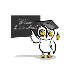 Owl and a blackboard isolated on white background vector image