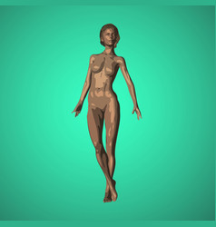 realistic female figure with smooth skin and fit vector image