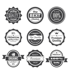 Retro Stamps and Badges vector image