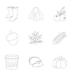 Season of year autumn icons set outline style vector