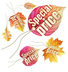Set of Autumn Sale tags EPS 10 vector image vector image