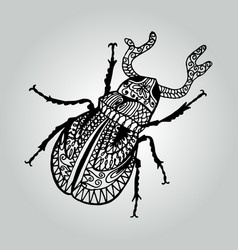 Abstract doodle stag-beetle wildlife collection vector
