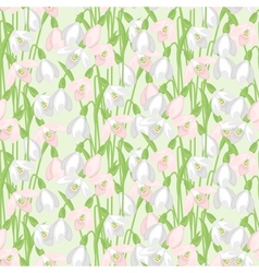 Spring flowers snowdrops natural seamless pattern vector