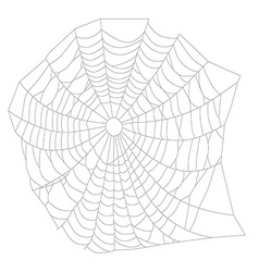 Spider web or net vector