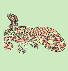 moth with ethnic floral ornaments zentagle vector image