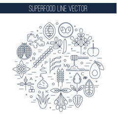 superfood line icons round vector image vector image