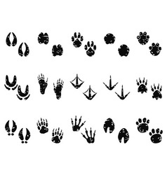 Grungy animal footprint track icon vector