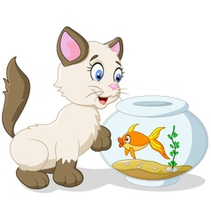 Cartoon curious cat with swimming fish vector