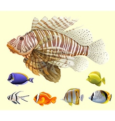 Different kind of fish vector