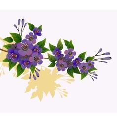 Spring all wakes up flowers sakura vector image