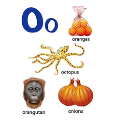 Things that start with the letter o vector