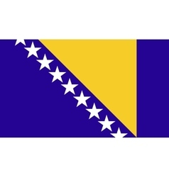 Bosnia and herzegovina flag image vector