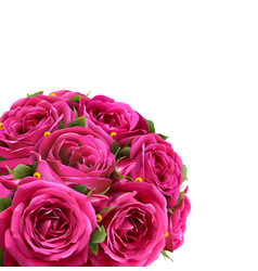 bouquet of roses flowers festive congratulation vector image