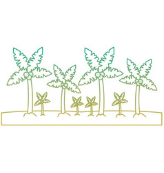 beach palm tree tropical landscape vector image
