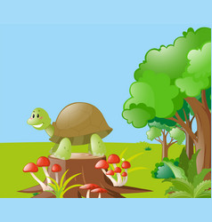 nature scene with turtle on the log vector image