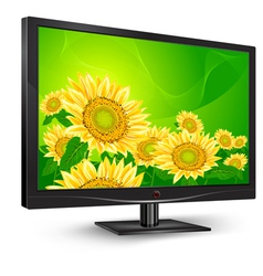 Television tv natural sunflower vector