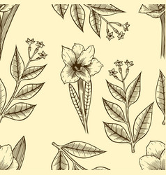 monochrome seamless floral pattern vector image