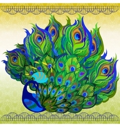 Peacock bird with fully fanned tail and light vector image vector image