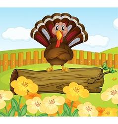 Turkey Background vector image vector image