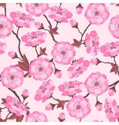 Spring flowers cherry natural seamless pattern vector